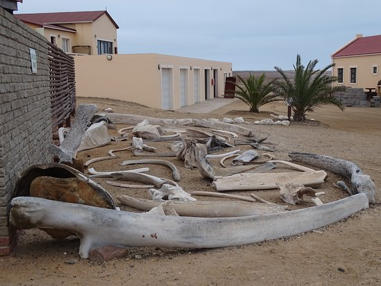 Skeleton Coast Park Photo
