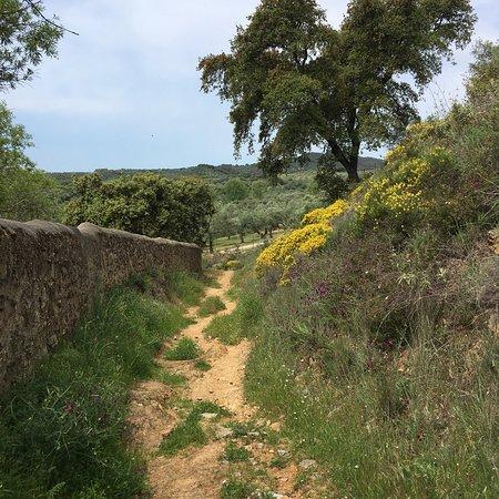 Constantina, Spain: photo1.jpg