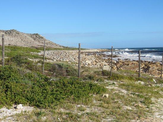 Scarborough, Güney Afrika: Fenced off area to Table Mountain National Park