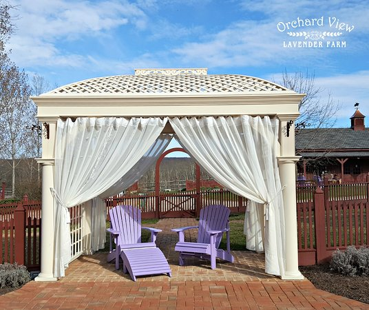 Port Murray, NJ: The Tranquility Garen at Orchard View Lavender Farm