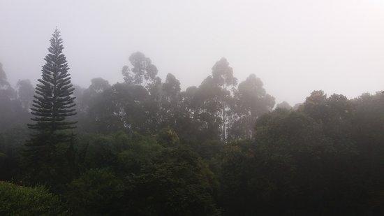 Maripora, SP: OUTONO