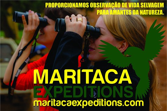 ‪Maritaca Expeditions‬