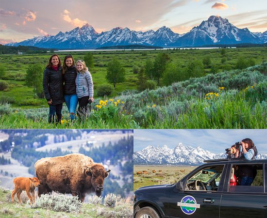 ‪Jackson Hole Eco Tour Adventures‬