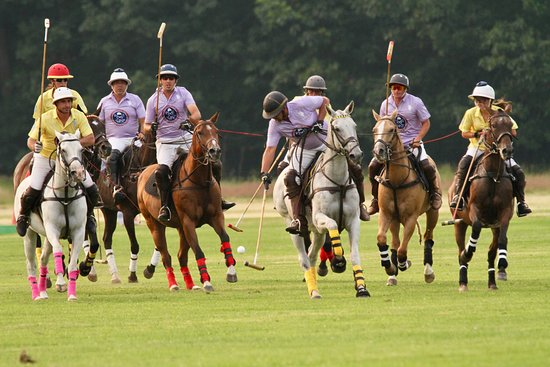 Greenfield Center, NY: World Class Polo celebrates 120 years at Saratoga Polo Association at YOUR Saratoga Summer!