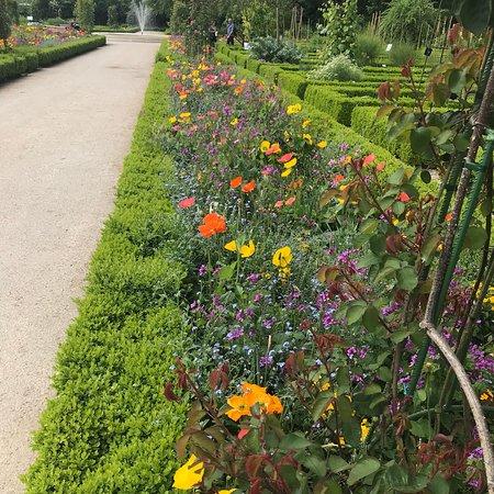 Jardin des plantes amiens prancis review tripadvisor - Jardin des plantes amiens ...