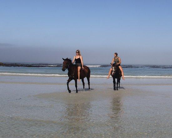 Gansbaai & Pearly Beach Horse Trails, fun in the sun.