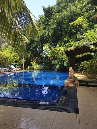 Hotel Susanthas: really good swimming pool