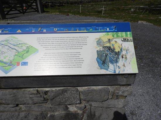 Caherconnell, Irlanda: DSCN0412_large.jpg