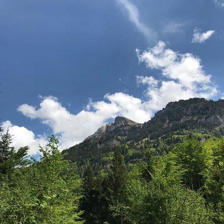 Blausee-Mitholz, سويسرا: Naturpark Blausee.