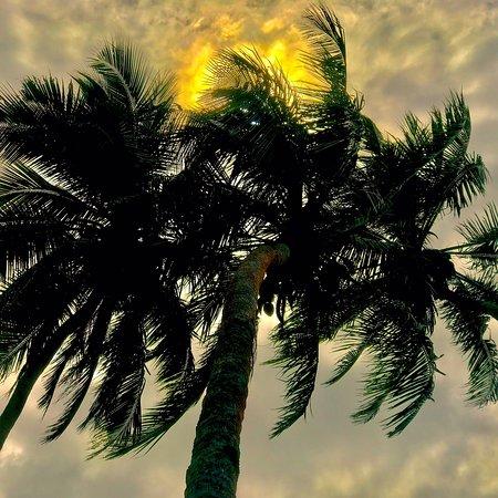 Вануа-Леву, Фиджи: photo1.jpg