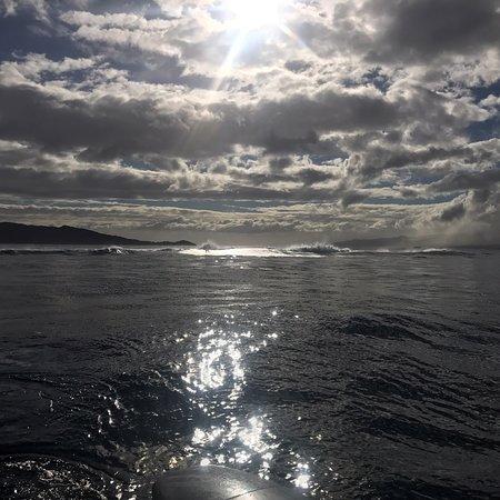 Вануа-Леву, Фиджи: photo3.jpg