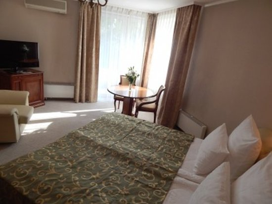Гостиница Октябрьская: Suite