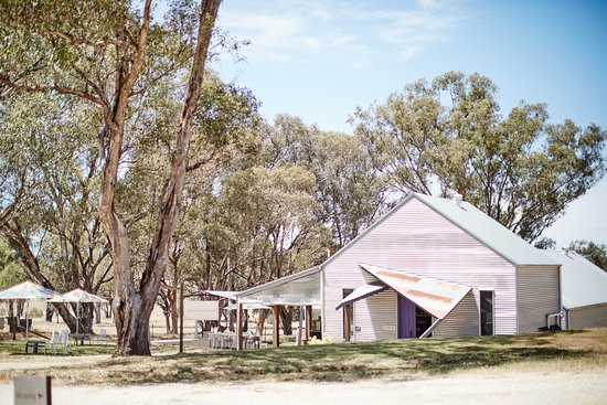 Rutherglen, Αυστραλία: Scion Cellar Door is nestled into the natural landscape surrounded by grey box gums.