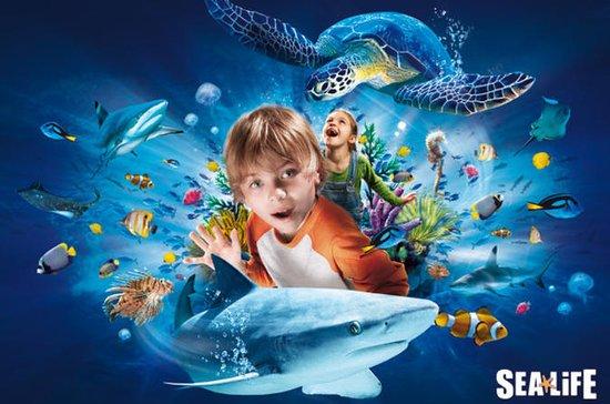 SEA LIFE Aquarium Dallas