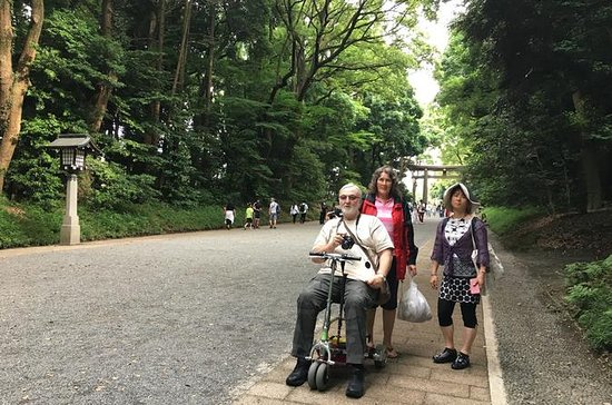 Full-Day Accessible Barrier-Free Tokyo for Wheelchair Users