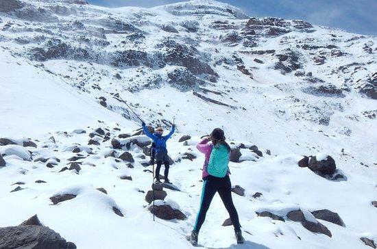 8-Day Ecuador Trekking the Avenue of...