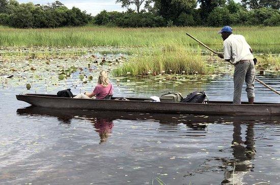 3 giorni Okavango Delta Mokoro Safari