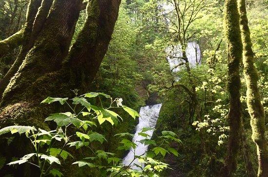 Hiking and Biking: Columbia Gorge...