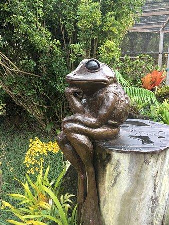 Foto de Na Aina Kai Botanical Gardens