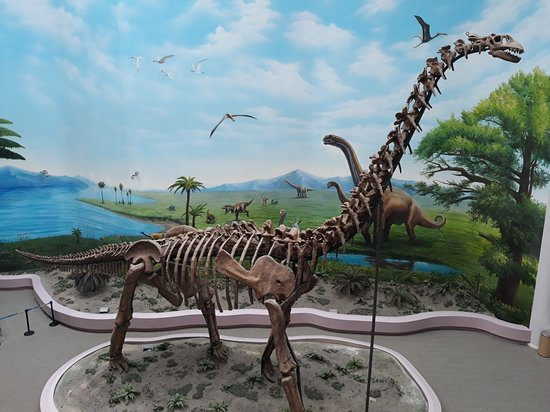 Shenyang, China: Paleontological Museum of Liaoning