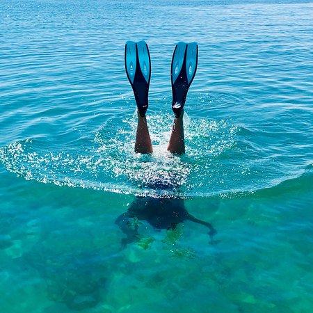 Dirk Hartog Island, Australia: photo6.jpg