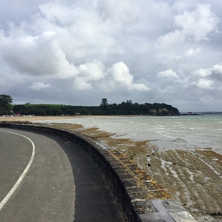 Mission bay beach auckland central 2018 all you need - Mission bay swimming pool auckland ...