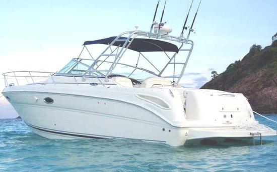 Boat Monty Charter: Sea Ray 290 Amberjack