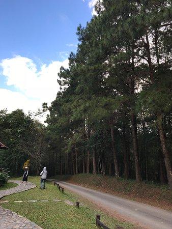 อุทยานแห่งชาติดอยภูคา: In front of my cabin