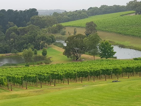 Margaret River Unplugged: Our beautiful world of Margaret River
