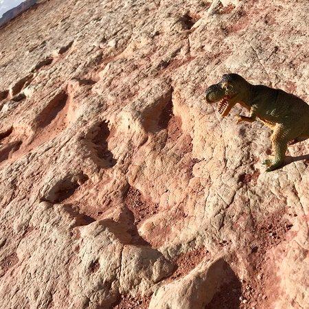 Tuba City, Arizona: photo0.jpg