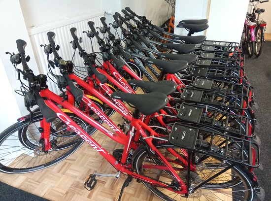 Bike Rental - by Carfield: Crescents