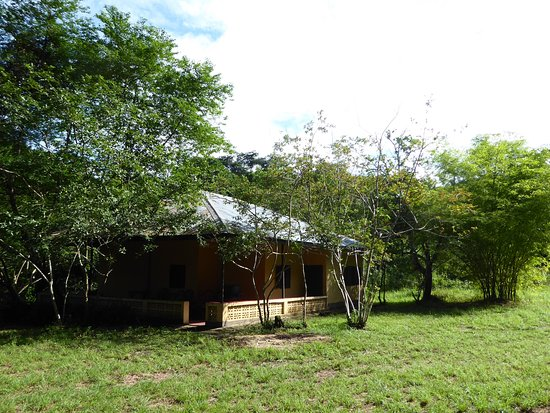 Kenema, Sierra Leone: SIleti Monkey Lodge