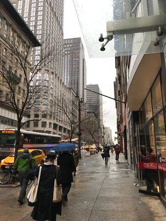 U Hotel Fifth Avenue: La 5th Avenue vista dall'uscita dell'hotel guardando a destra verso Central Park