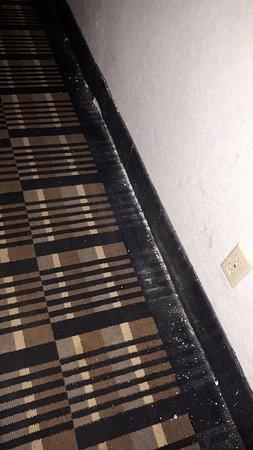 Super 8 by Wyndham Fargo/I-29/West Acres Mall: carper disgusting in the hallways