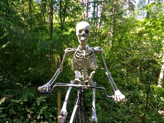 Churt, UK: One of many skeletons in the park