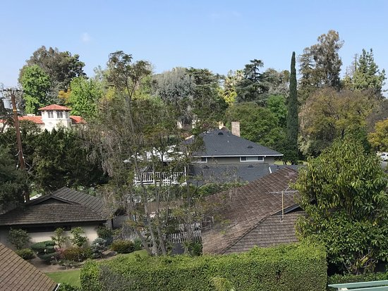 South Pasadena, Kalifornien: Sophisticated neibours' garden