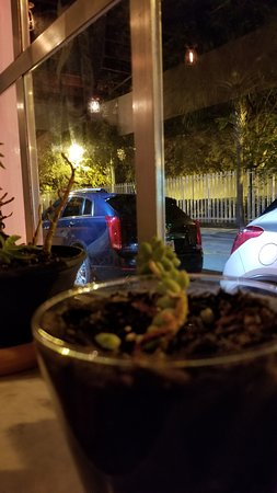 Pinch Kitchen: Window view. We always catch a ride share because the parking is a little sparse, but also beca