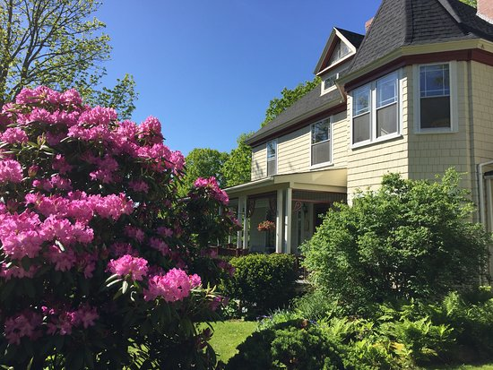 Victorian by the Sea: Spring