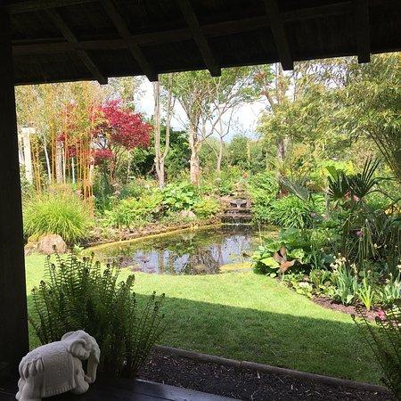 photo5 jpg - Picture of Terra Nova Fairy Garden, Limerick - TripAdvisor
