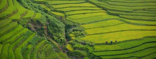 Tuban, Indonesien: getlstd_property_photo