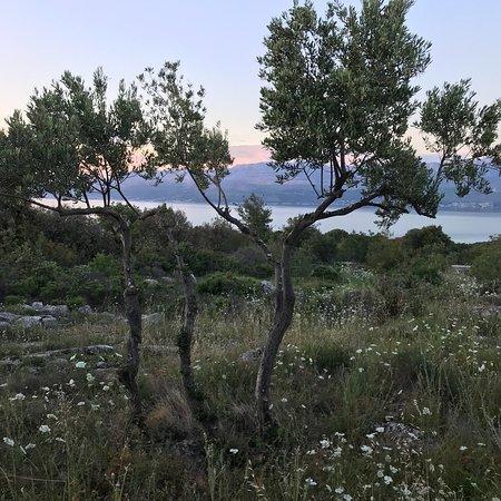 Brac Island, كرواتيا: photo5.jpg