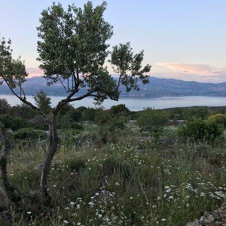 Brac Island, كرواتيا: photo6.jpg