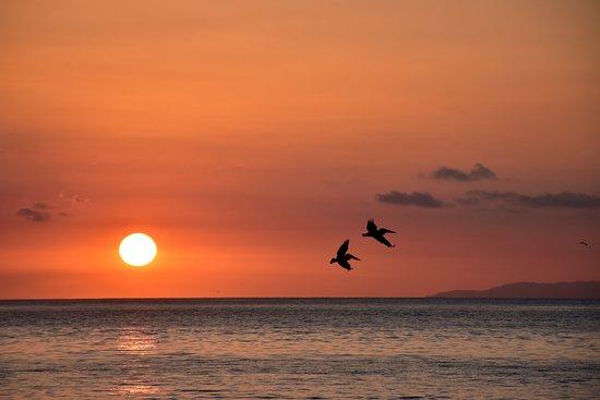 Provincia de San José, Costa Rica: Sunset at North Pacific coast
