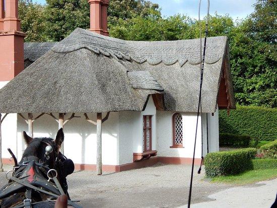 Great Southern Killarney Image