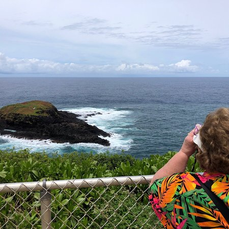 Kauai Nature Tours Reviews