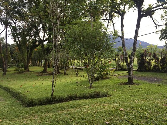 Cerro Chato Eco Lodge: View from outside the room