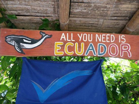 Las Tunas, Ecuador: IMG_20180514_131714_large.jpg