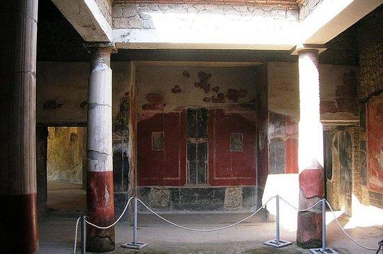 Visita privata di Stabiae, Oplontis