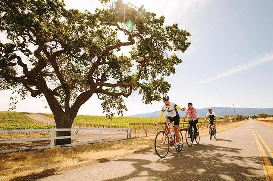 Wine Country Farm to Table Bike Tour