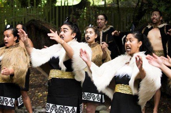 Maori Experience herunder Hangi...